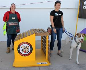 TAFE NSW build paw-fect homes for RSPCA rescue dogs