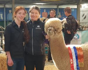 TAFE NSW teacher brings her hands-on skills straight from the farm to the city