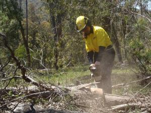Students get a taste of timber jobs at TAFE NSW Tumut