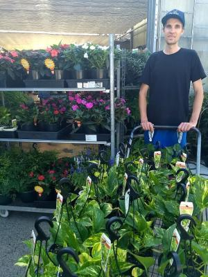 TAFE Digital graduate set to boost hydroponic production at wholesale nursery