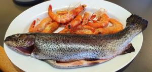 TAFE BUDS: How to find the freshest seafood