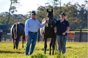 Careers on track as TAFE NSW partners with Highlands thoroughbred breeding operation