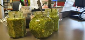 Hey pesto! Sara serves up suggestions for everyone's favourite green sauce