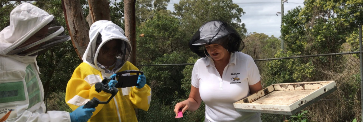 Bee keeping project a 'reel' hit for TAFE NSW Loftus students