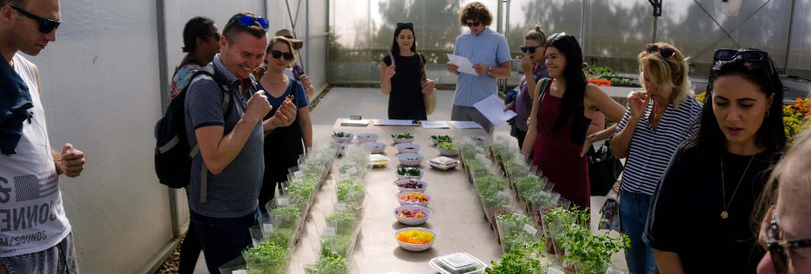 TAFE NSW students follow foods from farm to plate