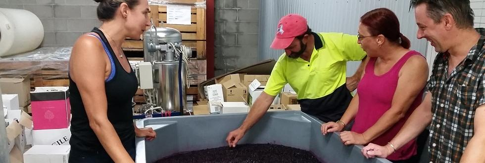 TAFE NSW winery stomping towards next intake