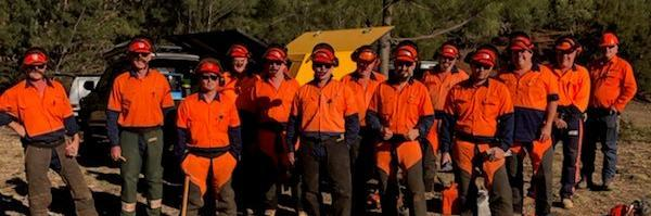 TAFE NSW chainsaw training a cut above