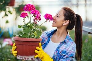 Start your career in Horticulture