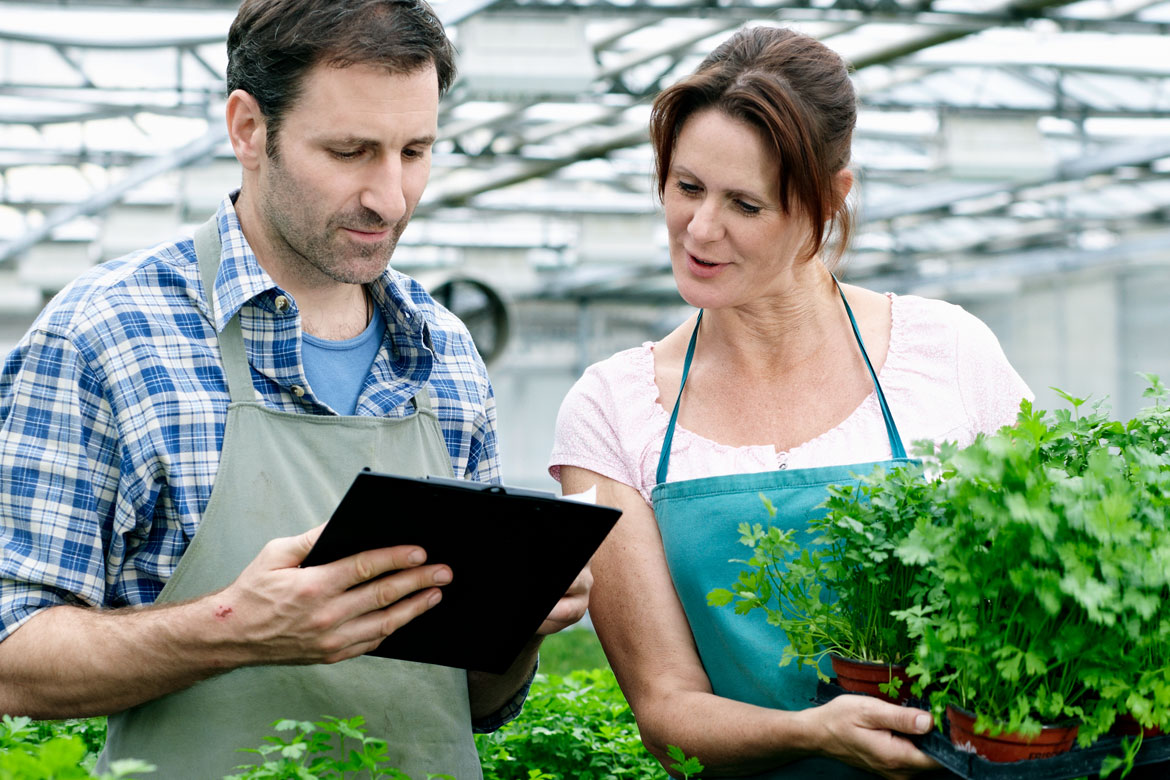 Short courses in Agribusiness for your team