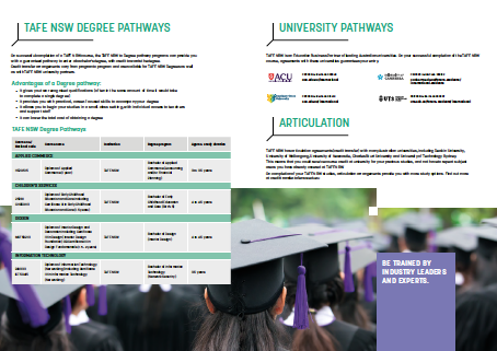 Diploma to Degrees flyer